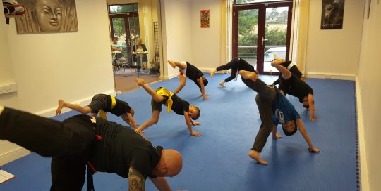 Warrior Arts and Fitness - Kids